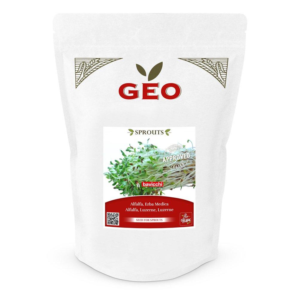 Keimsaaten Alfalfa 500 g