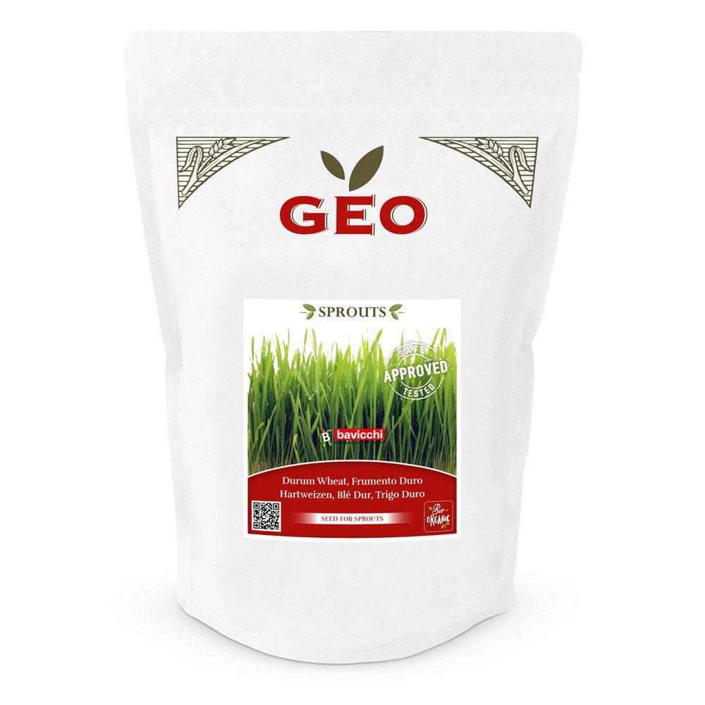 Geo Sprouts Weizengras Keimsaaten in Verpackung